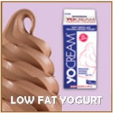 YoCream Lowfat Frozen Yogurt
