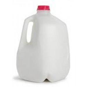 Nonfat Milk, 1 Gallon