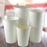 White Paper Hot Cups