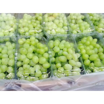 GREEN SEEDLESS GRAPES 18 lb.-CASE