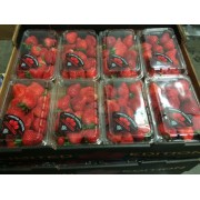 STRAWBERRIES, FRESH, 8/1lb.-PKG
