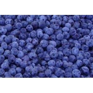 RFS ORGANIC IQF BLUEBERRIES, 30 LB