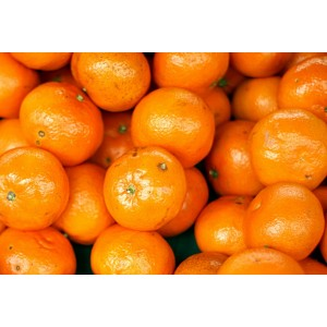 TANGERINES, HONEY (90) 30LB CASE